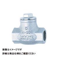 キッツ(KITZ) リフトチャッキ(10K) UN-20A 1個 163-7681 (直送品)