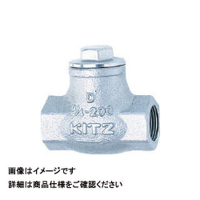 キッツ(KITZ) リフトチャッキ(10K) UN-25A 1個 163-7690 (直送品)