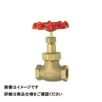 キッツ(KITZ) ジスク入りグローブバルブ(150型) 3/4 D-20A 1個 163-5778 (直送品)