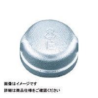 日立金属 日立 継手キャップバンド付き BCA15A 1個 163ー2086 (直送品)