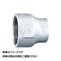 日立金属 径違いソケット RS-20AX15A 1個 163-3589 (直送品)
