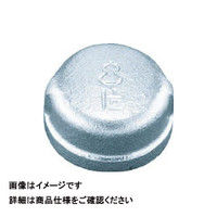 日立金属 日立 キャップバンド付 BCA20A 1個 163ー2094 (直送品)