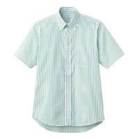 FACE MIX(フェイスミックス) 事務服 ユニセックス 大きいサイズ 半袖シャツ グリーン LL FB4509U (直送品)