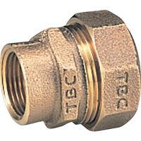 タブチ TBC PE継手メネジ1種13mm 13PGV1 1個 282ー2881 (直送品)