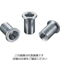 ロブテックス(LOBTEX) パック入りナット(40本入) Dタイプ スティール 5-3.2 NSD5P 1パック(40本) 309-4332 (直送品)