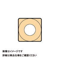 大昭和精機 カイザー カイザーチップ 鋳鉄用 SCMP070204EFM 1セット(10個入) 300ー6948 (直送品)