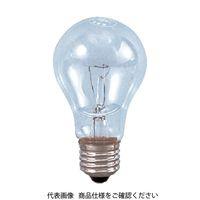 日動工業 日動 防雨耐震球200W WT200 1個 327ー2613 (直送品)