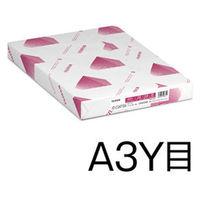 富士ゼロックス 両面コート紙 JDコート A3 GAAA0566 1冊(250枚入)