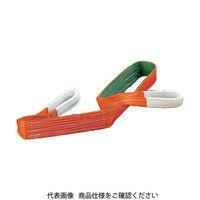 トラスコ中山 TRUSCO ベルトスリング JIS3等級 両端アイ形 100mmX5.0m G10050 1本 118ー5985 (直送品)