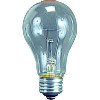 畑屋製作所 耐振電球100W (ILI、KL型用) TD-100 1個 370-4700 (直送品)