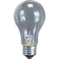 畑屋製作所 耐振電球60W (ILI、KL型用) TD-60 1個 370-4726 (直送品)