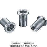 ロブテックス(LOBTEX) エビ ナット Dタイプ スティール 6-2.5 (1000個入) NSD625M 1箱(1000本) 372-4859 (直送品)