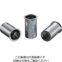 ロブテックス エビ ナット(1000本入) Kタイプ スティール 5ー2.5 NSK525M  372ー5014 (直送品)