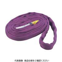 トラスコ中山(TRUSCO) ラウンドスリング(JIS規格品) 1.0tX2.5m TRJ10-25 1本 383-0608 (直送品)