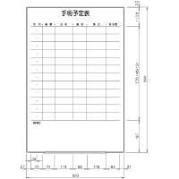 日学 ライトフレームホワイトボード罫引 手術予定表 LT-13-036 (直送品)