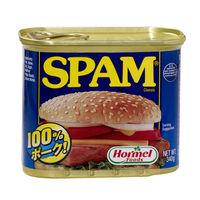 ホーメル スパム レギュラーN 340g