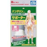 興和 バンテリンサポーター 腰 女性用 ホワイト 大きめサイズ 1個