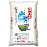 【精白米】新潟県産こしいぶき5kg