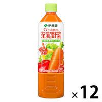 充実野菜緑黄色野菜ミックス 12本