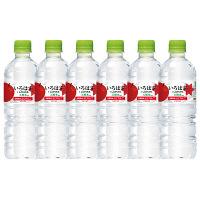 コカ・コーラ いろはす りんご 555ml 1セット(6本)