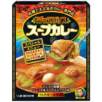 マジックスパイス スープカレー 307g