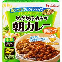 めざめるカラダ朝カレー 野菜キーマ中辛