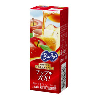 アサヒ飲料 バヤリース ホテルブレックファースト アップル100 200ml 1箱(24本入)