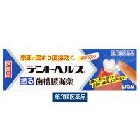 【第3類医薬品】デントヘルスR 1箱(10g) ライオン