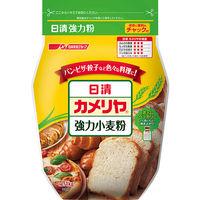 日清フーズ カメリヤ チャック付 1kg 341810 1袋