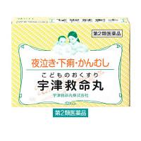 【第2類医薬品】宇津救命丸 119粒 宇津救命丸