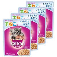 kalkan(カルカン) キャットフード パウチ 子猫用 しらす入り まぐろ 70g 1セット(4袋) マースジャパン