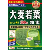 山本漢方製薬 大麦若葉粉末100% 計量タイプ 1箱(85g) 青汁
