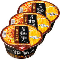 日清食品 日清 麺職人 担々麺3食