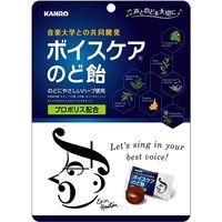 カンロ カンロ ボイスケアのど飴/70g 1袋