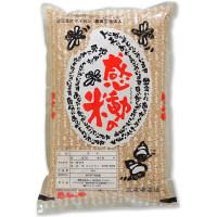 【玄米】福井県産感動の米コシヒカリ 28年度産 5kg