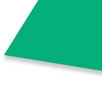 大王製紙 色画用紙 八切 緑 C-40 1袋(10枚入)