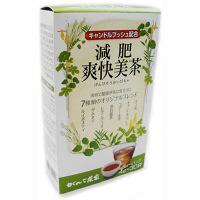 がんこ茶家 減肥爽快美茶 1箱(30バッグ入) お茶