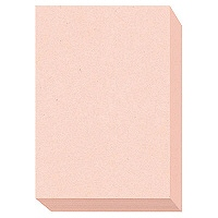 大王製紙 ダイオーマルチカラープリンタ用紙 76429 A3 1箱(1500枚入) さくら色