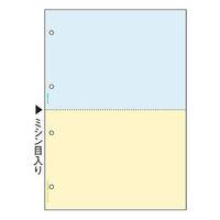 ヒサゴ マルチプリンタ帳票(FSC) FSC2011Z A4 カラー2面4穴 1箱(1200枚入)