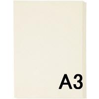 アスクル カラーペーパー A3 アイボリー 1セット(500枚×2冊入)