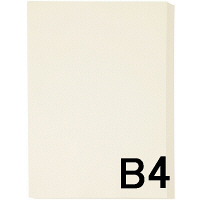 アスクル カラーペーパー B4 アイボリー 1箱(500枚×5冊入)