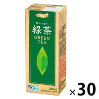 【アウトレット】エルビー 豊かな香り緑茶 200ml 1箱(30本入)