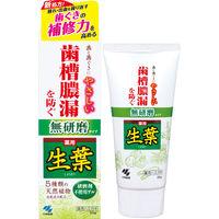 生葉(しょうよう) 無研磨タイプ 歯槽膿漏を防ぐ 薬用ハミガキ ハーブミント味 95g 小林製薬 歯磨き粉
