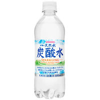 伊賀の天然水炭酸水 24本