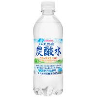 伊賀の天然水炭酸水 500ml 48本