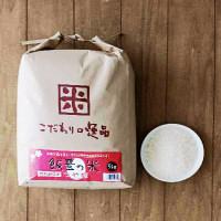 【精白米】山形県飯豊の米 つや姫 5kg 平成29年産【特別栽培米】
