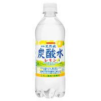 伊賀の天然水炭酸水レモン 24本