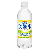 サンガリア 伊賀の天然水炭酸水レモン 500ml 1セット(48本)