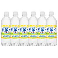 伊賀の天然水炭酸水レモン 6本