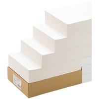 【大容量】 エーワン スーパーエコノミーラベル 表示・宛名ラベル プリンタ兼用 マット紙 白 A4 12面 1箱(500シート入) L12AM500